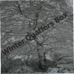 Winter Quaffers Box